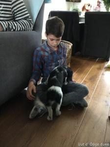 zijn nieuwe vriend Stan