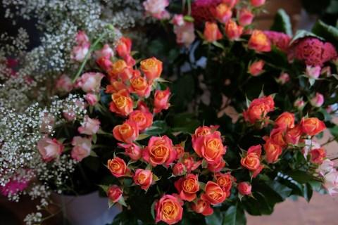 oopsadaisy-florist-beauly-6