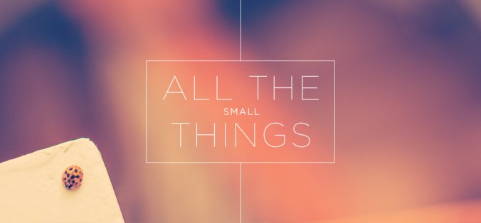 small_things