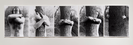 """Alan Sonfist, """"Myself Becoming One with the Tree,"""" 1969"""