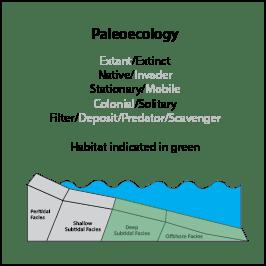 E_simplex_paleoeco