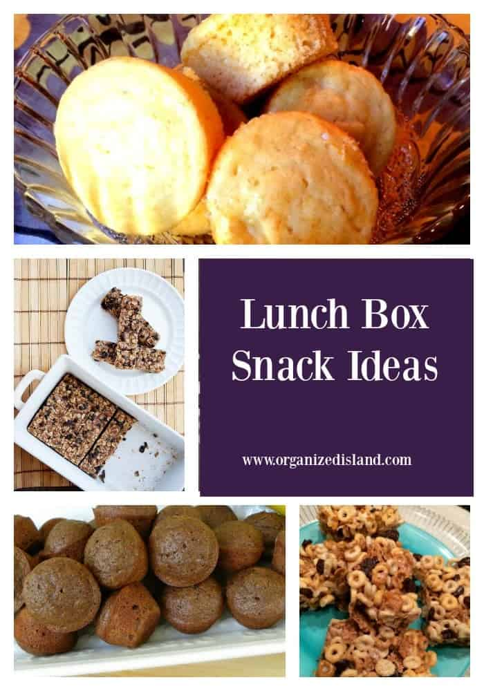 Lunch Box Snack Ideas