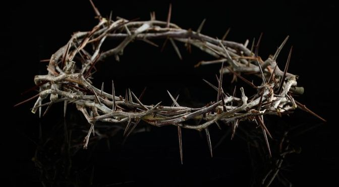 16713124 - crown of thorns over a dark background