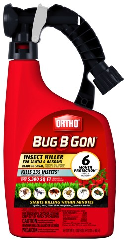 Small Of Bug B Gone