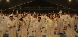 Meditation – A Festivity