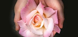 Osho's Mystic Rose Meditation