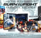 King of Fighters Burn to Fight