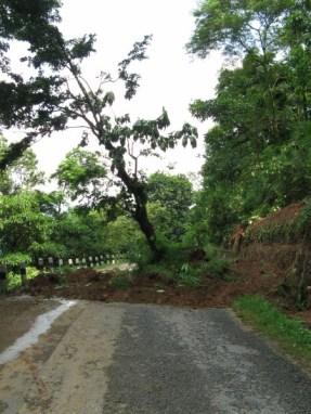 Mudslides abound