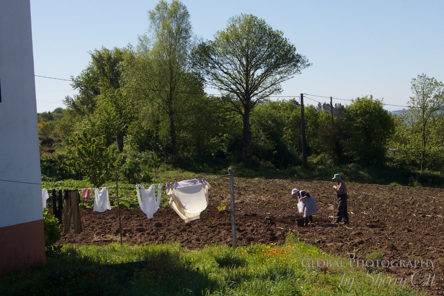 farmers spain
