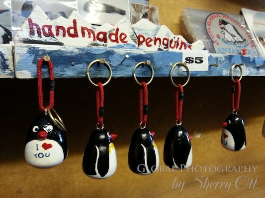 souvenir penguins