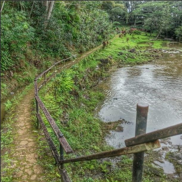 Wai Koa loop trail kauai