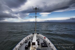 Wrangel island cruise