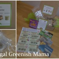 Green Kids Crafts Provides Eco-Educational Fun