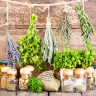 10 Incredible Hacks to Set Up a Tiny Herb Garden at Home
