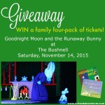 GIVEAWAY: Family Four-Pack of Tickets to Goodnight Moon and the Runaway Bunny