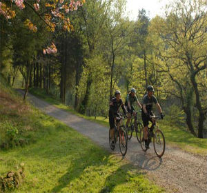 Long Distance Trails: Other Routes