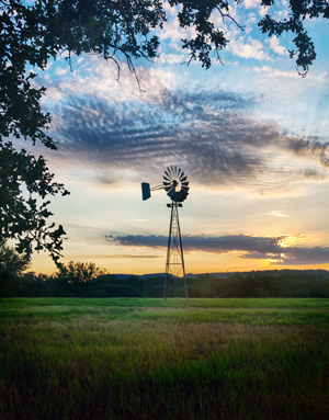Using tree branches to frame in two sides of a photo of a windmill at sunset.