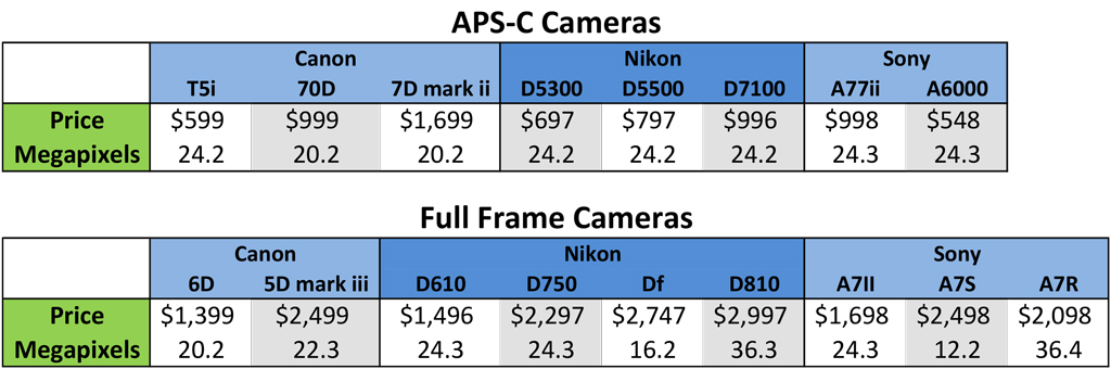 Is Full-Frame Worth It? Chart comparing megapixels in APS-C and full freme cameras