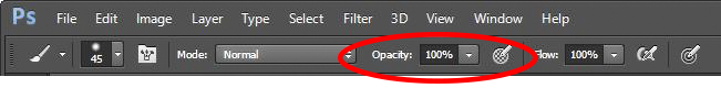 Photoshop brush tool controls