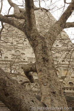 MG 7965 thumb Bodh Gaya and the Tree of Enlightenment
