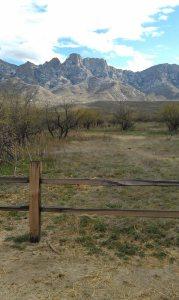 Catalina State Park Views