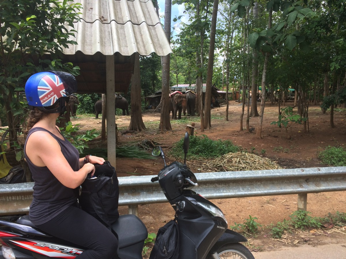 Most Interesting Day Trips From Chiang Mai, Thailand by Shannon Ullman
