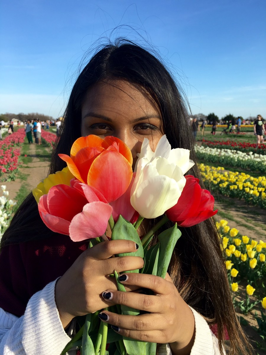 A Texas Tulip farm with roots in Netherlands