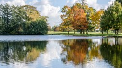 Autumn colours at Petworth House 2015