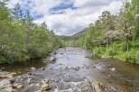 Scotland -20120618-8452-