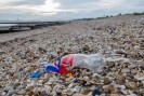 Plastic pollution found on a small stretch of beach at Hill Head