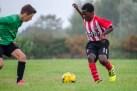 Football U11_20170930_4395