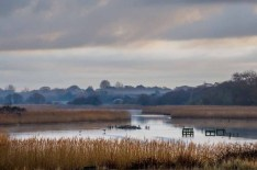 The River Meon at Titchfield Haven National Nature Reserve, Hill Head