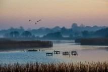Titchfield Haven National Nature Reserve_20190214_21540
