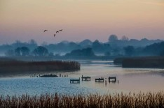 Titchfield Haven National Nature Reserve_20190214_21540