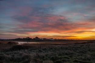 Titchfield Haven Nature Reserve_20190213_21357
