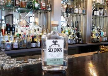 6 dogs gin
