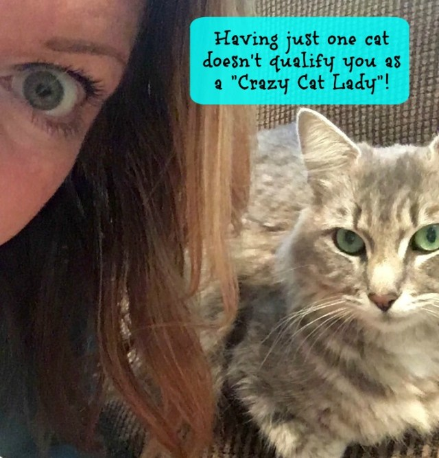 adopt-two-cats-crazy-cat-lady