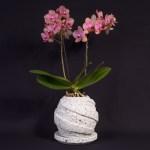 大谷石の植木鉢