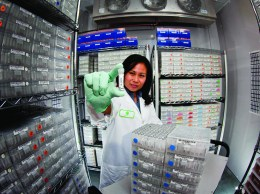 A Ceres researcher shows off seed samples in a laboratory at the Thousand Oaks-based company.