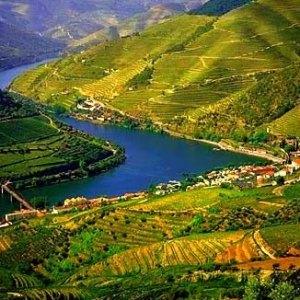 Pacotes de férias no Douro