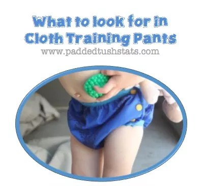 What To Look For In Cloth Training Pants