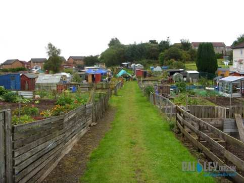 brediland allotments