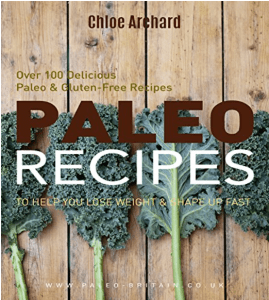 Paleo Recipes Ebook Front Cover