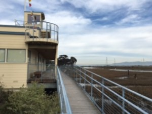 The EcoCenter in the Palo Alto Baylands is the home of Environmental Volunteers and a great place to explore the Baylands