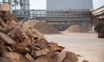 Cala l'import di legname