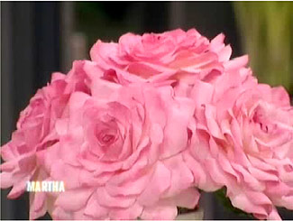 Martha Stewart Paper Rose Craft