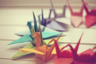 Origami Crane and Variations