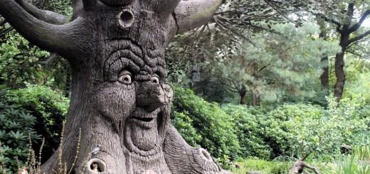Efteling - Forêt des Contes
