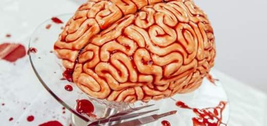 realistic-brain-cake