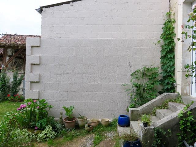 Murale d'un jardin secret : Le mur blanc prêt à peindre